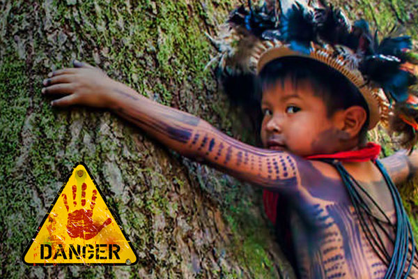 photo-petition-enfant-surui-arbre-deforestation-amazonie-foret